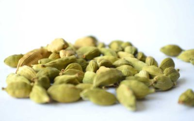 Top 9 Health Benefits of Eating Cardamom Daily