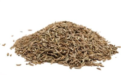 15 Awesome Health Benefits of Cumin Seeds