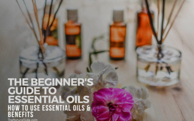 Top 4 Ways To Use Essential Oils In Your Daily Life