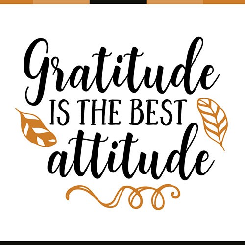Want More Happiness? The Answer is Gratitude. Find 25 Wise and Positive Gratitude Quotes That Will Inspire You To Practice Gratitude.