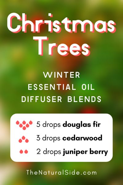 Christmas Trees - Winter Essential Oil Diffuser Blends | Essential Oils via thenaturalside.com #essentialoils #winter #diffuser