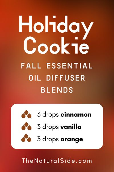 11 Fall Essential Oil Diffuser Blends to Warm Your Home Up. Holiday Cookie - 3 drops Cinnamon + 3 drops Vanilla + 3 drops Orange | Essential Oils Recipes via thenaturalside.com #essentialoils #diffuser #blends #fall